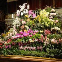 2011年 花の香りにつつまれて ~シェイクスピア・カントリー・パーク~