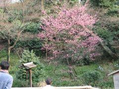 東京お出かけランチ~フォーシーズンズホテル椿山荘「日本料理 みゆき」~