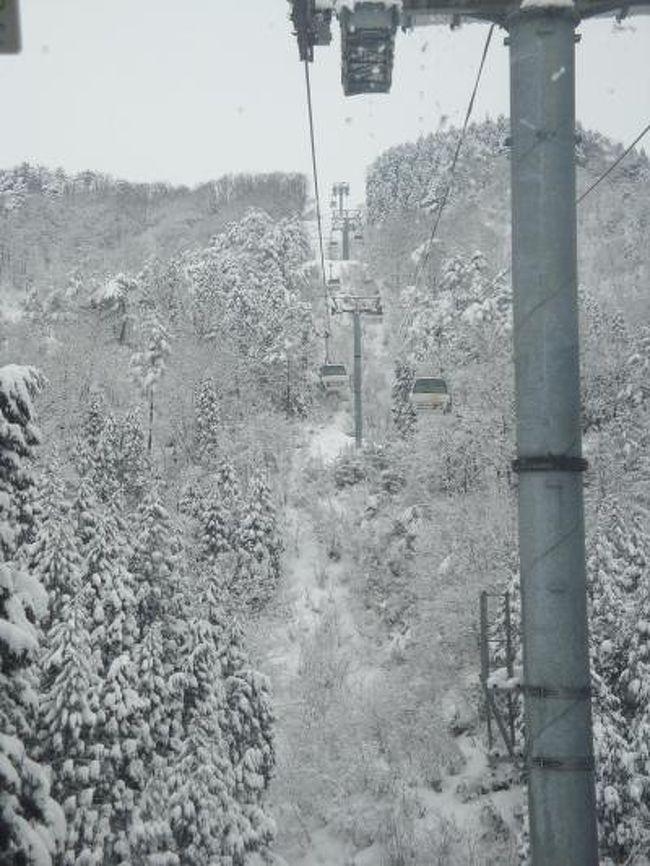 今年の近畿地方のスキー場は積雪が多く、コンディションもベストな状態をキープです(^_^)v<br />北海道ツアーから帰り、またしても今シーズン2回目のオジロへ行ってきました。<br />相変わらず空いていたスキー場ですが、根強いオジロファンが思いおもいのシュプールを描いていました(^_-)-☆