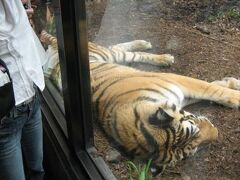 北海道 旭山動物園
