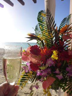 グアム ハッピーバレンタイン!Vol14(第5日目:夕方) グアム州知事とハッピーバレンタイン!優雅なイベントに感動♪