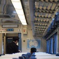 2011年 1月 バースデイきっぷで回る四国特急列車の旅 Vol.3 2日目 高知_大歩危_徳島