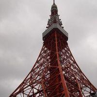 2011初旅行は極寒の関東へ~東京おのぼりさん編~