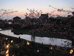 保田川頼朝桜の里 竹灯篭まつり2011