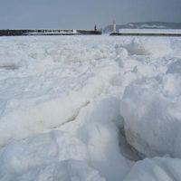 知床の冬・・・流氷を求めて� 『流氷と遊んじゃった〜♪♪』
