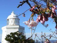春の兆し漂う伊王島でのんびり