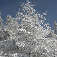 白銀の世界 長野の美ヶ原