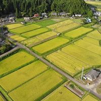 奥上林散策  旅行記  Kyoto Tamba Kogen Quasi-National Park