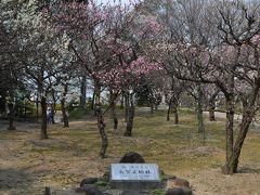 282意賀美神社の梅