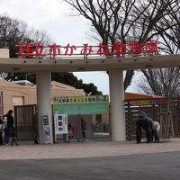 かみね動物園を訪ねて [2010](1)