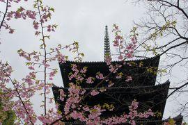 03.  京都の寺巡り。まずは東寺に…弘法市の開催日かいな