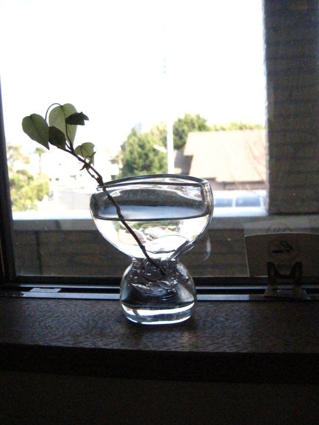 お天気もいいので、お友達に頼まれていた満開の千倉の花畑の写真撮り。<br /><br />帰りは最近とっても気になる『Horne Cafe(オルネカフェ)』さんを訪れた。<br /><br />お店のホームページ http://www12.ocn.ne.jp/~horne/index.html<br /><br />なんだかいつまでも帰りたくなくなるのが不思議かな。<br /><br />やっぱり、まんまるのシンプルパンを食べて、『おいし〜い!』っとつぶやける。<br /><br /><br />南房総のカフェ旅は、南房総ツアーズhttp://m-boso.com/