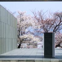 2011春、豊田市美術館(1)名鉄豊田市駅から豊田市美術館へ、童子苑、ソメイヨシノ