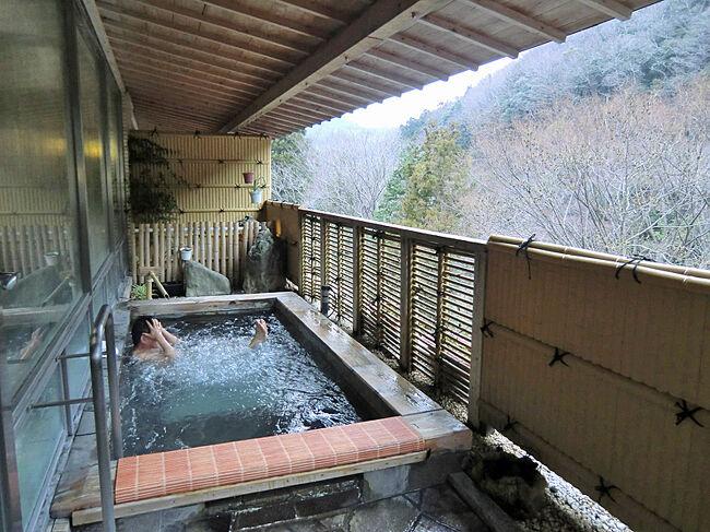 私の温泉宿100選~塩江温泉、新樺川観光ホテル(香川県)