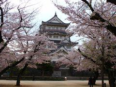 千葉市ぐるり旅【11】~満開に咲き誇る桜&千葉城~亥鼻公園