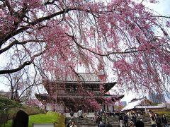 増上寺の桜と東京タワー