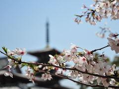 2011大阪の春-1(四天王寺)