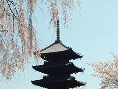京都さくら紀行2011 (4日目最終日)醍醐寺、伏見稲荷、東寺