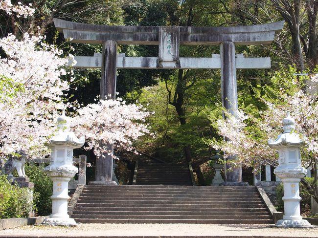 旅の2日目。<br />今日もとてもいい天気。青空に桜の花びらが映えます。<br /><br />朝一番で次の目的地である菊池へ向かう予定が、<br />昨日、八千代座の館内を観れなかったため、急きょ変更。<br /><br />八千代座見学後、菊池へ移動、その後熊本に戻り、<br />水前寺成趣園の庭園を眺めて旅を締めくくりました。<br /><br /><br />〔2日目行程〕<br />山鹿市内(八千代座)~菊池市内/菊池温泉~水前寺成趣園
