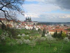 文化を感じる音楽にたくさん出会えたプラハ