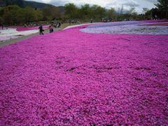羊山公園に芝桜を見に行こう! ~日帰り秩父の旅~