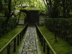 新緑の高桐院