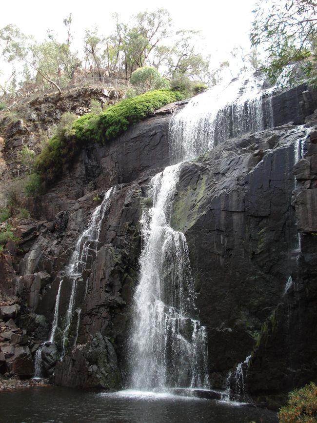 メルボルンの北西部約260kmに位置するグランピアンズ国立公園。東京都の面積とほぼ同じ16万7000ヘクタールのこうだいの敷地を持つ。アボリジニ原住民の現存する壁画の80%が、この国立公園で見る事ができる。動植物も豊富で、200種の野鳥が登録されており、コアラ・カンガルー・ワラビー・エミューなどの野生動物も豊富に生息。<br />  <br />アクセス方法 車:メルボルン市内より北西にのびているM8(Western FWY)で約3時間。国立公園にあるHalls Gapの町から、Mt. Victory Rdで山の上に車で約20分走ると、左手にMcKenzie Fallsとサインが出てくるので、そこを右に曲がり、さらにすぐに左に曲がると、ウォーキング出発地点のがMacKenzie Falls Car Park出てくる。<br /><br />Googleマップによる地図 :http://maps.google.com/maps?f=q&amp;hl=ja&amp;q=australia&amp;layer=&amp;ie=UTF8&amp;om=1&amp;ll=-37.337408,142.566833&amp;spn=0.739201,0.237579&amp;t=h&amp;z=10<br /><br />施設:売店、トイレ、ピクニック用ベンチ有り <br />ハイキングコース名: MacKenzie Falls Lookout Loop (一周コース) <br />ルート: MacKenzie Falls Car Park - MacKenzie Falls - MacKenzie Falls Car Park <br />所要時間 &amp; 距離: 約50から60分 / 1.3km <br />レベル: 初級者 <br />高低差: 100m <br />ベストシーズン: 1年中。雨でも道がしっかりしているので、ウォーキングは問題ありません。雨の少ない夏は、雨が2-3日降った後がベスト(夏は水量が少ないです)。一番の天敵は濃い霧で、霧が出ると全く景色が見られなくなります。<br />通信: 全ルートで通話不可。<br /><br />*現在、このルートは洪水被害のため閉鎖中です。詳しくは、Parks Victotriaのホームページをご参照下さい:http://www.parkweb.vic.gov.au/1park_display.cfm<br /><br />