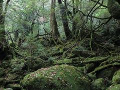 屋久島でゴールデンウィーク~(2)白谷雲水峡