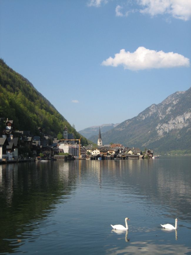 ザルツカンマーグートを船とバスで巡ろう・その4/5。<br />ハルシュタットに行ってきました。<br /><br />世界一きれいな湖と評判のハルシュタットに興味がある方や、<br />これから行かれる方の何かお役にたちますように。<br /><br />そして、これから<br />船とバスと電車でザルツカンマーグートに行かれる方は、<br />「オーストリアの休暇公式ガイドブック」というサイトに、<br />ザルツカンマーグートの情報があり便利です。<br /><br />船とバズの時刻表もあるので、私はフル活用し、<br />2時間ドラマの犯人並みに使いこなしました。<br />そんな様子がわかるこの旅日記。<br /><br /><br />★こちらは、<br />プラハ(チェコ)<br />↓<br />チェスキークルムロフ(チェコ)<br />↓<br />ザルツブルグ(オーストリア)<br />↓<br />ザルツカンマーグート(オーストリア)<br />↓<br />ウィーン(オーストリア)<br />↓<br />ヘルシンキ(フィンランド)<br /><br />への一人旅日記たちです。良かったら、他の場所も見てください。<br />