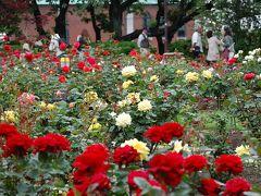 神奈川探訪(19) バラを求めて 港の見える丘公園、山手西洋館、横浜バラクラ