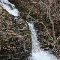 花貫渓谷でバードウォッチング [2009](1)