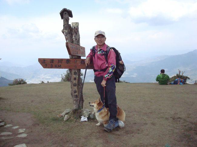 本日白木山に1000回目登山達成の人がいる。で、その記念すべき日に頂上で賛同者一同が記念撮影をする。と言う。Mr. Mはそれに参加。で、参加しないMrs. Mのお供ではじめての登山です。<br />ちなみに祝賀会は「白木ファーム」で行われた。そうです。<br />僕の記録<br />白木山(889.8m)白木駅からのルート(標高差820m)登山&下山記録<br />標準登山所要時間 2時間 ⇒ 僕の登山所要時間 2時間30分<br /><br />登り<br />時刻<br />8:00JR芸備線 白木山駅 着<br />8:10登山口  登山開始<br />8:30二合目 頭馬 背ノ馬<br />8:50展望台<br />9:00三合目。「獅子ノ門」<br />9:20四合目。「勢至観音」<br />9:37六合目。「桜ノ馬場」<br />9:50七合目。「営門ノ段」<br />10:00水のみ場 (湧き水)<br />10:20Mr. &Mrs.Yと会う<br />10:25九合目<br />10:40頂上 三角点<br /><br />降り<br />時刻<br />11:20下山開始<br />11:50水のみ場 (湧き水)<br />12:15五合目。「天主ノ段」<br />12:30四合目と三合目の間<br />釈迦ノ段<br />12:55穴地蔵<br />13:00二合目<br />13:15登山口到着<br />
