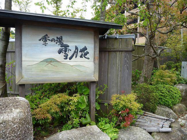 2011年05月 家族でのんびり箱根温泉へ ② 「季の湯 雪月花」 初日編
