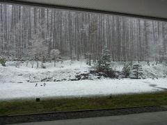花見のはずが雪の北海道