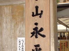 ドライブ(永平寺)