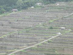 坂元棚田は日本の原風景。こころのふるさとがここにある。