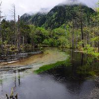 新緑眩しい上高地へ【2】~河童橋から明神池~