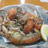 柳川で有明海の初ネタをいただく 九州北上1日1麺1温泉の旅