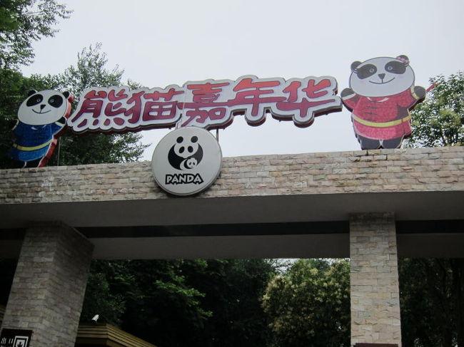 2011ANA直行便でいく四川省の旅 (4) 成都