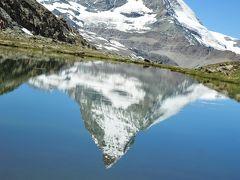 スイス花とハイキングの旅・ゴルナーグラードからリッフェルベルグハイキング
