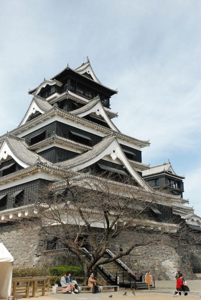法事で行ったのですが、折角なのでプチ観光してきました。<br />はじめに熊本市内を観光して、阿蘇の方へ行きました。