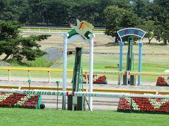 2011年7月 新潟競馬場