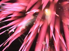 天神祭2011 火と水の都市祭礼 「本宮~天神祭奉納花火~」