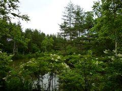 優雅な避暑♪ 上信越国立公園でリゾートライフ!Vol1 ☆我が別荘近辺の美しき浅間高原♪