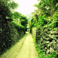 鹿児島離島の旅3  2日目と3日目:喜界島