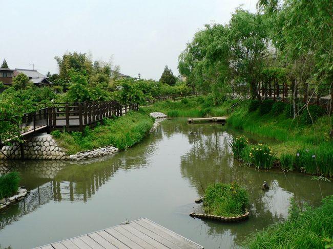 長島水辺のやすらぎパークは発電用施設周辺地域振興事業の観光施設として、旧久我邸を改修し休憩施設として整備したもの。久我家は江戸時代、長島藩の重職にあったが1871年の廃藩置県によって長島県が置かれたが安濃津県に編入され1872年には三重県と改称された。久我氏は戸長に任命され、長島・大島・松ヶ島・駒江・出口・又木・小島の各村を治め、1889年に市町村制が施行されるまで戸長の職にあった。1946年、農地改革が施行され地主として所有してきた農地が解放された。戸長の屋敷は残り家屋を1879年に改築、明治の生活様式を知る上で貴重な建物であることから空家となっていた家屋敷を2003年長島町が譲り受け、観光客などの休憩施設として改装をし、「長島水辺のやすらぎパーク」として利用することとしたとのこと。大地主の衰亡を物語る歴史だが、やすらぎパークは庭園がきれいな公園だった。<br />(写真は長島水辺のやすらぎパーク)<br />