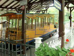 2011年夏 旅のおまけ マインツ・ヴィースバーデン ネロベルク鉄道に乗ろう