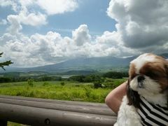 優雅な避暑♪ 上信越国立公園でリゾートライフ! Vol.14 ☆愛犬と一緒に愛妻の丘♪