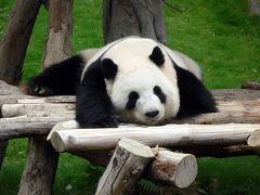 中国四川省(成都・雅安)・広州・香港・マカオのパンダを訪ねて(香港編) 2011.8