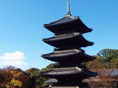 八事で食べつくせ!月に1回通っておいしい物を発見しよう♪2011年秋 興正寺の紅葉
